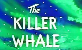 CB25-PR- The Killer Whale- PREVIEW